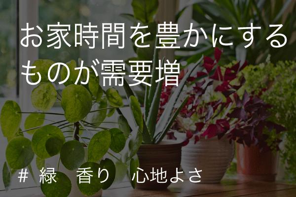 お家時間 (covid-19/コロナウイルス)