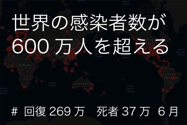 感染者数 (covid-19/コロナウイルス)
